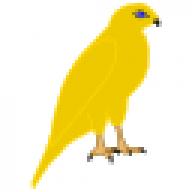 goldhawk